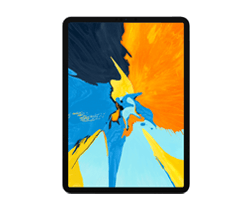 iPad Pro 2018 (11 inch)